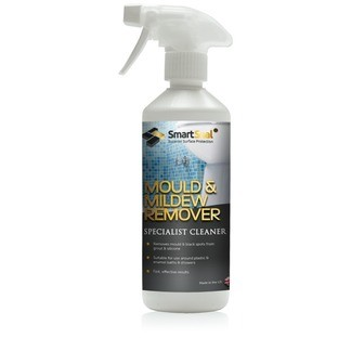 REMOVING MOULD AND MILDEW FROM TILES AND GROUT