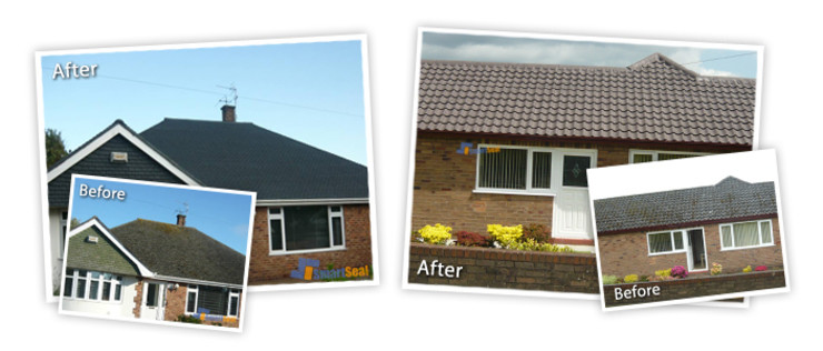 Roof Cleaning Bournemouth & Poole, Moss Removal Bournemouth & Poole