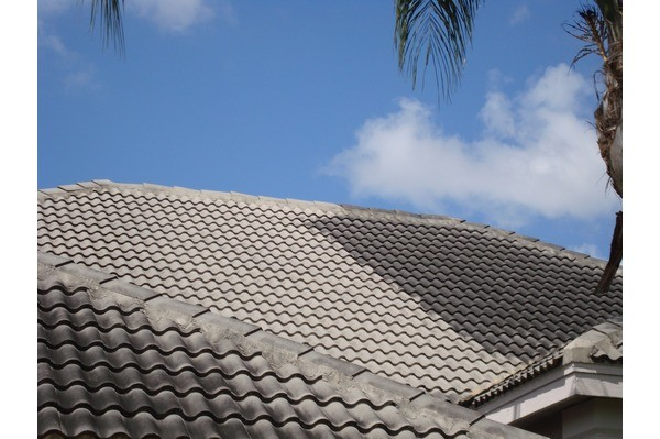 BIOWASH™ A SAFE NON-PRESSURE ROOF CLEANING PROCESS